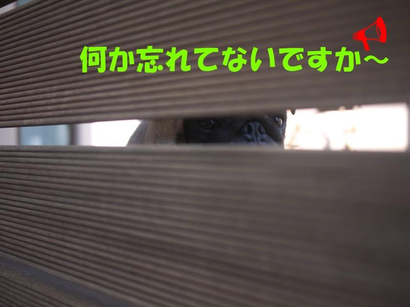 119_018_2
